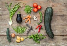 Πρόσφατα επιλεγμένα λαχανικά Στοκ εικόνα με δικαίωμα ελεύθερης χρήσης