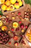 Πρόσφατα επιλεγμένα βερίκοκα Οργανικά βερίκοκα στον πίνακα μετάλλων βερίκοκα σε ένα κλουβί Στοκ Εικόνες