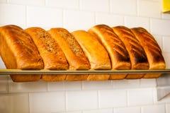 Πρόσφατα ζυμωμένο σιτάρι και άσπρα ψωμιά για την πώληση Στοκ φωτογραφίες με δικαίωμα ελεύθερης χρήσης