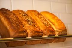 Πρόσφατα ζυμωμένο σιτάρι και άσπρα ψωμιά για την πώληση Στοκ εικόνα με δικαίωμα ελεύθερης χρήσης