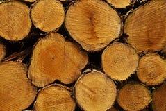 Πρόσφατα κόψτε και συσσώρευσε την ξυλεία έτοιμη για τη συλλογή Στοκ Εικόνες