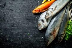 Πρόσφατα πιασμένα ψάρια στοκ εικόνες