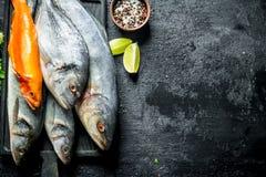 Πρόσφατα πιασμένα ψάρια στοκ εικόνα