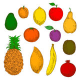 Πρόσφατα συγκομισμένα εικονίδια σκίτσων φρούτων αναδρομικά Στοκ φωτογραφία με δικαίωμα ελεύθερης χρήσης