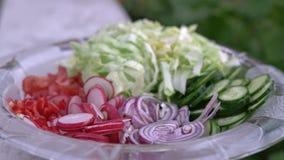 Πρόσφατα τεμαχισμένη θερινή σαλάτα Πολλά εύγευστα λαχανικά στη σαλάτα γυαλιού κυλούν - αγγούρι, μαρούλι, ραδίκι, ντομάτες, κόκκιν απόθεμα βίντεο