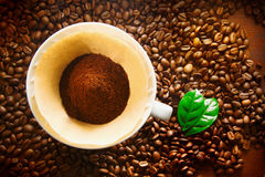 Πρόσφατα φασόλια επίγειου καφέ Στοκ Εικόνες