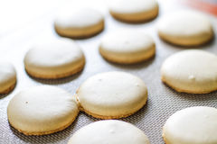 Πρόσφατα ψημένα κίτρινα macarons Στοκ Εικόνες