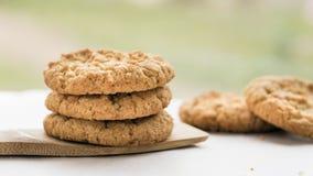 Πρόσφατα ψημένα μπισκότα Anzac Στοκ εικόνες με δικαίωμα ελεύθερης χρήσης