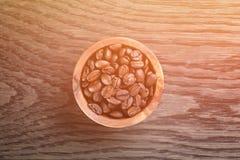 Πρόσφατα ψημένα arabica φασόλια καφέ στο κύπελλο Στοκ Εικόνες