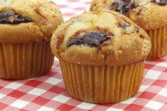 Πρόσφατα ψημένα muffins κερασιών Στοκ Εικόνες