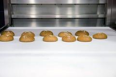 Πρόσφατα ψημένος γύρω από το ψωμί στη ζώνη μεταφορέων στο αρτοποιείο Στοκ εικόνες με δικαίωμα ελεύθερης χρήσης