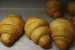 Πρόσφατα ψημένος croissants στο φούρνο ψησίματος Στοκ εικόνα με δικαίωμα ελεύθερης χρήσης