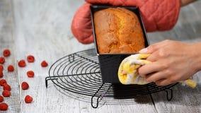 Πρόσφατα ψημένο κέικ λιβρών με το σμέουρο απόθεμα βίντεο