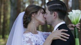 Πρόσφατα wed φιλί και εραστές ζευγών στον ήλιο φιλμ μικρού μήκους