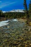 Πρόσφατο thaw άνοιξη, κομητεία Clearwater, Αλμπέρτα, Καναδάς Στοκ εικόνα με δικαίωμα ελεύθερης χρήσης