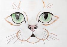Πρόσωπο γατών που χρωματίζεται με τα χρωματισμένα μολύβια στοκ εικόνες με δικαίωμα ελεύθερης χρήσης