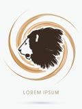 Πρόσωπο λιονταριών Στοκ φωτογραφία με δικαίωμα ελεύθερης χρήσης