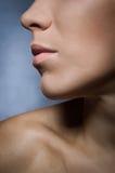 Πρόσωπο κινηματογραφήσεων σε πρώτο πλάνο της νέας γυναίκας ομορφιάς - ζώνη χειλικής σύνθεσης στοκ εικόνες