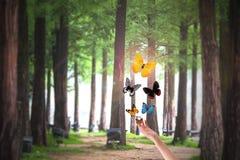 Πρόσωπο που απελευθερώνει τις πεταλούδες στο πάρκο Στοκ φωτογραφία με δικαίωμα ελεύθερης χρήσης
