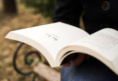 Πρόσωπο που διαβάζει ένα βιβλίο Στοκ Εικόνες