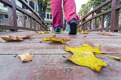 Πρόσωπο που περπατά στην ξύλινη γέφυρα που καλύπτεται από τα ζωηρόχρωμα φύλλα Στοκ φωτογραφία με δικαίωμα ελεύθερης χρήσης