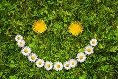 Πρόσωπο χαμόγελου λουλουδιών Στοκ Εικόνες