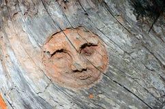 Πρόσωπο χαμόγελου στο ξύλο, Valle δ ` Aosta, Ιταλία Στοκ Φωτογραφία