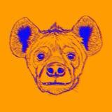 Πρόσωπο Hyena στο πορτοκαλί υπόβαθρο Απεικόνιση αποθεμάτων