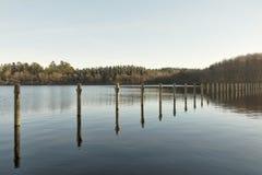 Πρόσδεση Πολωνοί σε μια λίμνη στοκ εικόνα