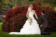 Πρόταση της λαϊκής ερώτησης γάμου Στοκ φωτογραφία με δικαίωμα ελεύθερης χρήσης