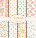 πρότυπα λουλουδιών άνε&upsilon Στοκ Εικόνες