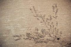 Πρότυπα στην άμμο Στοκ εικόνα με δικαίωμα ελεύθερης χρήσης