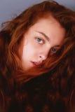 Πρότυπες δοκιμές Όμορφο redhead κορίτσι με τη σγουρή τρίχα Φυσικό χρώμα Πορτρέτο Krupneishego σε ένα γκρίζο υπόβαθρο στούντιο Στοκ Εικόνες