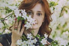 Πρότυπη γυναίκα με τα άνθη της Apple σε έναν κήπο άνοιξη Στοκ Εικόνες