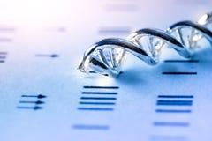 Πρότυπη δομή DNA μορίων επιστήμης, έννοια επιχειρησιακής ομαδικής εργασίας Στοκ Εικόνα