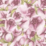 πρότυπο άνευ ραφής κόκκινος αυξήθηκε Λεπτή αγάπη Συρμένα χέρι λουλούδια Peony υδατοχρώματος με τα φύλλα απεικόνιση αποθεμάτων