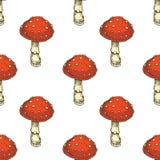 πρότυπο άνευ ραφής Κόκκινο Amanita μανιτάρι αγαρικών μυγών απεικόνιση αποθεμάτων