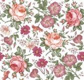 πρότυπο άνευ ραφής Ρεαλιστικά απομονωμένα λουλούδια γεωμετρικός παλαιός τρύγος εγγράφου διακοσμήσεων ανασκόπησης Το Chamomile αυξ ελεύθερη απεικόνιση δικαιώματος