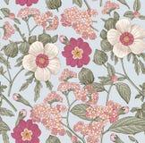 πρότυπο άνευ ραφής Ρεαλιστικά απομονωμένα λουλούδια Εκλεκτής ποιότητας hibiscus ηλιοτροπίων υποβάθρου διάνυσμα χάραξης σχεδίων pr Στοκ φωτογραφία με δικαίωμα ελεύθερης χρήσης