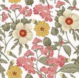 πρότυπο άνευ ραφής Ρεαλιστικά απομονωμένα λουλούδια Εκλεκτής ποιότητας hibiscus ηλιοτροπίων υποβάθρου διάνυσμα χάραξης σχεδίων pr Στοκ Φωτογραφίες