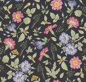 πρότυπο άνευ ραφής Ρεαλιστικά απομονωμένα λουλούδια Εκλεκτής ποιότητας διάνυσμα χάραξης σχεδίων primavera πετουνιών υποβάθρου hib Στοκ Εικόνες