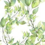 πρότυπο άνευ ραφής Χρωματισμένη χέρι απεικόνιση watercolor Πράσινοι κλάδοι απεικόνιση αποθεμάτων
