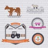 Πρότυπο αγροτικών ετικετών του στοιχείου εμβλημάτων για το προϊόν ή το σχέδιό σας, του Ιστού και των κινητών εφαρμογών με το κείμ Στοκ Φωτογραφία