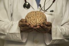 Πρότυπο γιατρών και εγκεφάλου Στοκ Εικόνες