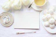 Πρότυπο για τις παρουσιάσεις με τις άσπρα τουλίπες και το τσάι Στοκ Φωτογραφίες