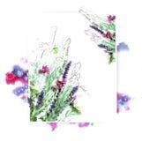 Πρότυπο για το σχέδιο πρόσκλησης με τον παφλασμό watercolor και το φρέσκο περίγραμμα λουλουδιών και μελανιού Στοκ Φωτογραφία