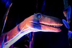 Πρότυπο δεινοσαύρων στο ρόδινο, πορφυρό και μπλε περιβάλλον Στοκ εικόνες με δικαίωμα ελεύθερης χρήσης