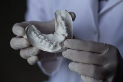 Πρότυπο δοντιών για την εκπαίδευση στο εργαστήριο στοκ εικόνες