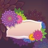 Πρότυπο ετικετών λουλουδιών Στοκ εικόνα με δικαίωμα ελεύθερης χρήσης