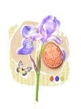 Πρότυπο ευχετήριων καρτών Πάσχας με το πασχαλινό λουλούδι ίριδων αυγών, πεταλούδων και άνοιξη Σχέδιο Πάσχας για τη θρησκεία χ της Στοκ Εικόνες